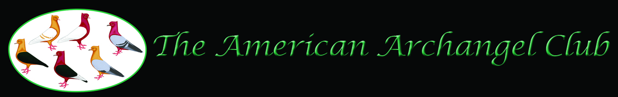 The_American_Archangel_Club